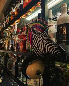 """""""One tequila, two tequila, three tequila, floor.""""...und natürlich die beste Musik! Wir freuen uns jetzt schon wieder auf unvergessliche Abende mit euch!  #bistro #bar #151 #151er #drinks #music #food #klagenfurt #kärnten #carinthia #gastro #qualitytime Klagenfurt, Quality Time, Tequila, Restaurant Interior Design, Save Yourself, Content, Drinks, Board, Best Music"""