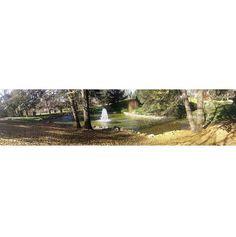Parte del el Parque del oeste. Se puede ver una fuente con las hojas amarillas caídas en otoño.
