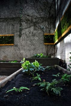 landscape, garden design, green