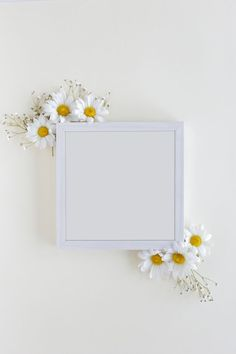 Top view of blank photo frame decorated with white daisy flowers over white backdrop Free Photo Photo Frame Wallpaper, Flower Background Wallpaper, Framed Wallpaper, Flower Backgrounds, Frame Background, Geometric Background, Story Instagram, Creative Instagram Stories, Polaroid Picture Frame