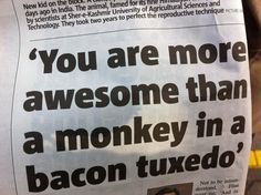 You are more awesome than a monkey in a bacon tuxedo!