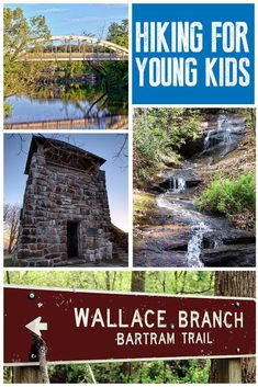 Franklin North Carolina, North Carolina Hiking, North Carolina Waterfalls, Franklin Nc, North Carolina Vacations, North Carolina Mountains, Mountains In Tennessee, East Tennessee, Blue Ridge Mountains
