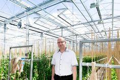 Jaap Mazereeuw, algemeen directeur Enza zaden in Enkhuizen, waar op verantwoorde wijze innovatieve groenterassen ontwikkeld. - See more at: http://regiovanhollandsebodem.nl/ondernemen/parels/enza-zaden#sthash.qcPVwSt9.dpuf
