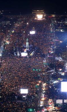 시민들이 청와대 100미터 앞에서 국화를 던지며 박근혜의 국가는 죽었다고 외치다(집회 화보)