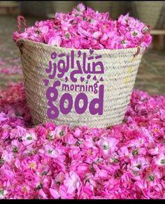 Good Morning Flowers, Good Morning Good Night, Good Morning Images, Good Morning Quotes, Morning Morning, Morning Wish, Beautiful Words, Beautiful Images, Beautiful Morning Messages