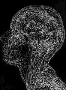 Glass engraving of Amanda Palmer's head MRI scans. http://newsimg.bbc.co.uk/media/images/42520000/jpg/_42520673_angela2203.jpg