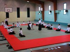 b-photo-aikido-stage-christophe-balsan-salles-curan-12410-87-130-3.jpg (800×600)