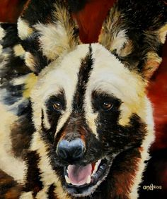 Wild dog (oil)