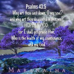 Sing Out My Soul to The Lord: ... In Living Hope!