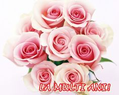 Fresh Beautiful Bouquet Pink Roses - OMG, these look like candy! Pink Rose Bouquet, Pink Rose Flower, Purple Flowers, Red Roses, Flowers Nature, Colorful Flowers, Fresh Flowers, Spring Flowers, Rose Flower Pictures