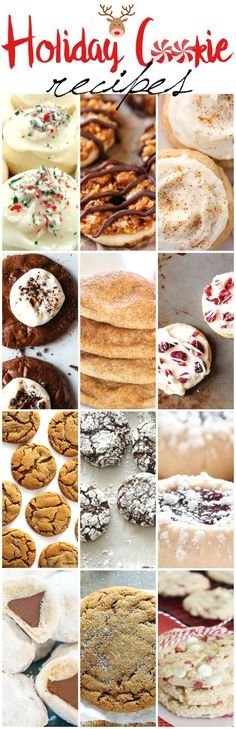 Bake up the perfect holiday cookie for your family, friends and cookie exchanges. Some of the best and easy recipes.