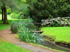 Jardin du Pré Catelan : Petite passerelle enjambant la rivière, plantes et arbres au bord de l'eau, allée et pelouses du parc, à Illiers-Combray