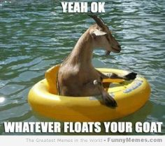 funny goats | Funny-memes-whatever-floats-your-goat.jpg