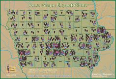 There are 99 licensed wineries and 306 commercial vineyards in Iowa! So proud to be an Iowa girl!