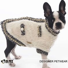 dog clothes - Bing images