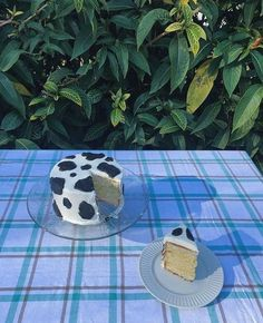 Pretty Birthday Cakes, Pretty Cakes, Cake Birthday, Cute Food, Yummy Food, Cow Cakes, Cow Print Cakes, Think Food, Cute Desserts