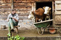 Devenir agriculteur, vous en rêvez derrière votre ordinateur. Sélection des sites et des blogs qui distillent conseils et techniques pour néo-paysans.