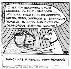 Psychic paw-reading