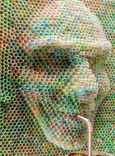 Do this sculpture is awesome because it is made out of straws, but the face it drinking from another straw, which is pretty cool.