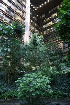 Atrium of the Ford Foundation Building