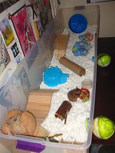 Image result for 2 hamster cages connected together
