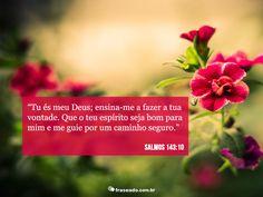 Tu és meu Deus; ensina-me a fazer a tua vontade. Que o teu espírito seja bom para mim e me guie por um caminho seguro. Salmos 143:10