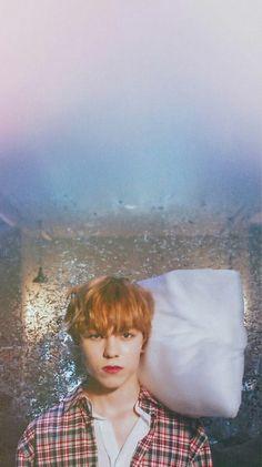 You shine like the star. Mingyu Wonwoo, Seungkwan, Woozi, Vernon Seventeen, Seventeen Debut, Rose Quarts, Choi Hansol, Vernon Hansol, Adore U