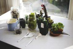 4 x Tuinieren voor de plantenkiller