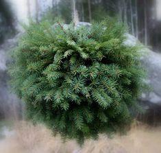 Suvikumpu: HAVUPALLO-OHJE Hobbies And Crafts, Diy And Crafts, Winter Christmas, Christmas Crafts, Outdoor Christmas Decorations, Holiday Decor, Terrace Garden, Natural Materials, Flowers
