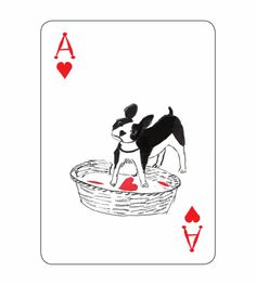 John Littleboy is raising funds for Pack of Dogs Playing Cards: Pedigree Poker — USPCC Printed on Kickstarter! A deck of cards about dogs, transformed by an artist's imagination, where every card tells a story. Playing Cards Shop, Vintage Playing Cards, Dogs Online, Cartomancy, Nose Art, Deck Of Cards, Dog Design, Card Games, Funny