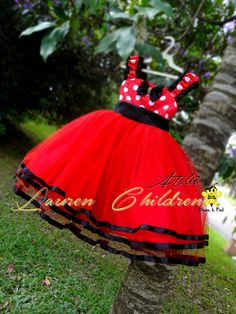 Minnie Mouse Birthday Outfit, Minnie Dress, Bday Girl, Baby Party, Baby Dress, Tutu, Ball Gowns, Daughter, Princess