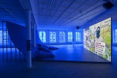 Hito Steyerl at Artists Space
