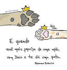 Animais,amor,saudade...