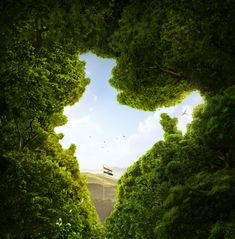 Luxury Indian Nature Wallpaper for Mobile - Indian Nature Wallpaper for Mobile Unique Wallpaper India Flag Of India Trees Cgi Hd Creative Graphics 9204 Happy Independence Day Images, Independence Day Wallpaper, 15 August Independence Day, Indian Independence Day, Independence Day Drawing, Independence Day Poster, Independence Day Background, Indian Flag Wallpaper, Indian Army Wallpapers
