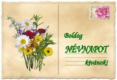 Névnap - jolka.qwqw.hu Birthday, Avon, Floral Arrangements, Picasa, Creative, Birthdays, Dirt Bike Birthday, Birth Day