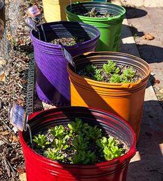 DIY Container Ve able Garden Update