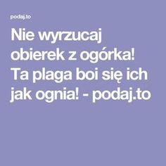 Nie wyrzucaj obierek z ogórka! Life Guide, Good To Know, Cleaning, Health, Tips, Gardening, Asia, Diet, Garten