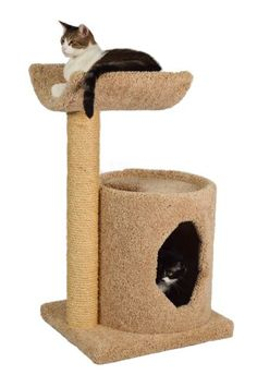 Molly and Friends Cradle Condo Premium Handmade Cat Tree with Sisal Model 36 Beige >>> See this great product. (This is an affiliate link ). Cool Cat Trees, Diy Cat Tree, Cat Gym, Angora Cats, Cat Activity, Cat Stands, Cat Scratching Post, Cat Scratcher, Cat Condo