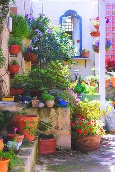 """friends' garden"" by nadine henley 