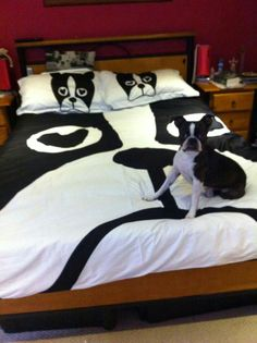 I want this bedding so bad!! Does anybody know where you can purchase it?