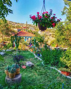 Assos Alterna Köy Otelinin bahçesinin bir bölümü. Odalar köy evi tarzında döşenmiş, tuvalet ve banyolar da dahil olmak üzere çok temiz bir otel. Tamamen sessiz ve huzurlu. İşleten ailenin müşteri yaklaşımı kusursuz. Güler yüzlü ve iyi niyetli hizmet. ☎️0286-7234252 www.kucukoteller.com.tr/alterna-hotel