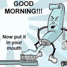 64 Ideas For Funny Good Morning Memes Hilarious Humor Funny Images Gallery, Images Gif, Funny Pictures, Funny Good Morning Memes, Morning Humor, Morning Cartoon, Morning Texts, Funny Jokes For Adults, Funny Jokes To Tell