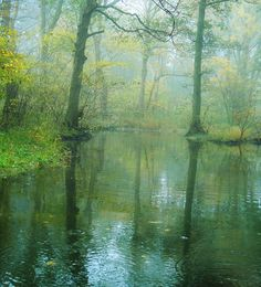 The fairy lake by Marie Granelli, via Flickr