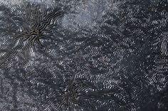 Jessica Rosenkrantz--emergent wrinkling pattern on the top of a metal trash can lid at the Arnold Arboretum  blog post: n-e-r-v-o-u-s.com/blog/?p=6687