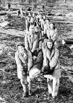 land girls - another special picture of my nan, she is near the back in this picture. this is the timber corps women carrying a log out of the forest........