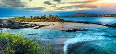Galapagos Island Tours: When to Go #ecotourism #traveltips