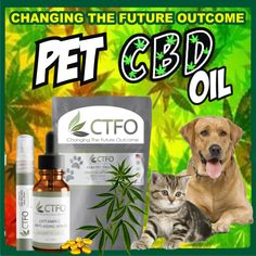 CBD for pets. Now it's not only us but our beloved pets can reap the benefits of CBD. Treat your pet today? Oils For Dogs, Anxiety Panic Attacks, Cbd Hemp Oil, Oil Benefits, Skin Firming, Insomnia, Pain Relief, How To Fall Asleep, Your Pet