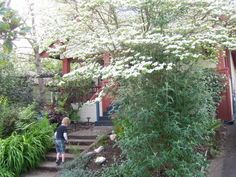 My House - Alberta Arts District, Portland