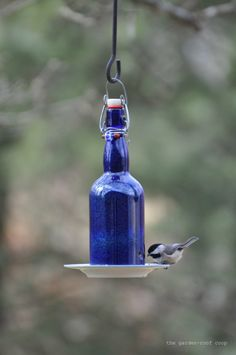 the garden-roof coop: DIY Wine Bottle Bird-Feeders
