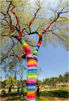 wonder if they'd mind me doing this on our tree at the caravan park :p